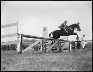 2-8-2 Millwood Hunt. Bayard Tuckerman on Mrs. J.H. Howard's Irish Rose