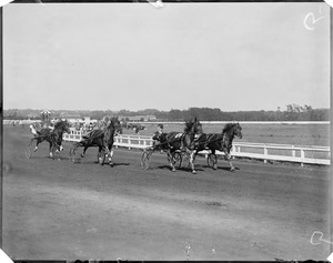 Trotters at Readville track