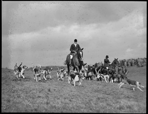 Riding with the hounds during Myopia Hunt on Bradley Palmer's estate