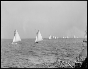Race in Dorchester Bay