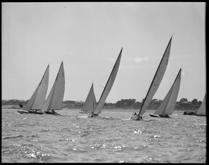 Start of a Q-class race - Marblehead