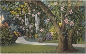 Orchid Lane, Thomas Edison winter home, Fort Myers, Florida