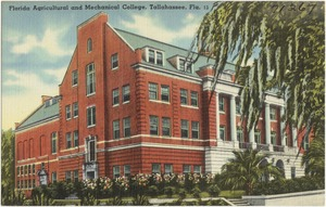 Florida Agricultural and Mechanical College, Tallahassee, Florida