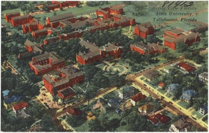 Aerial view, Florida State University, Tallahassee, Florida
