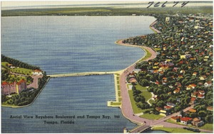 Aerial view Bayshore Boulevard and Tampa Bay, Tampa, Florida