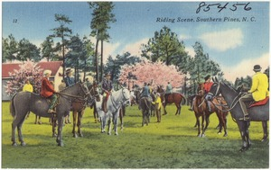 Riding scene, Southern Pines, N. C.