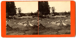 Site of the home of Dr. Elbridge Johnson, 1836?-1874, Williamsburg, Mass., after the 1874 Mill River Disaster