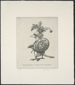 The digressions, plate 1: The weakness of birds for gaudy uniforms
