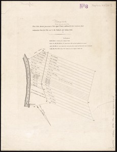 Plat of the ancient possessions of the upper prairie confirmed by the governors, their continuation from the Elm road to the Wabash and Indian Field