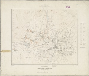 Special map of Rossland, British Columbia