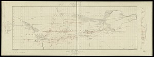 Plan and section, Montague gold district, Halifax Co., Nova Scotia
