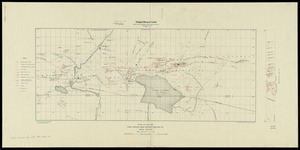 Plan and section, Lake Catcha district, Halifax Co., Nova Scotia