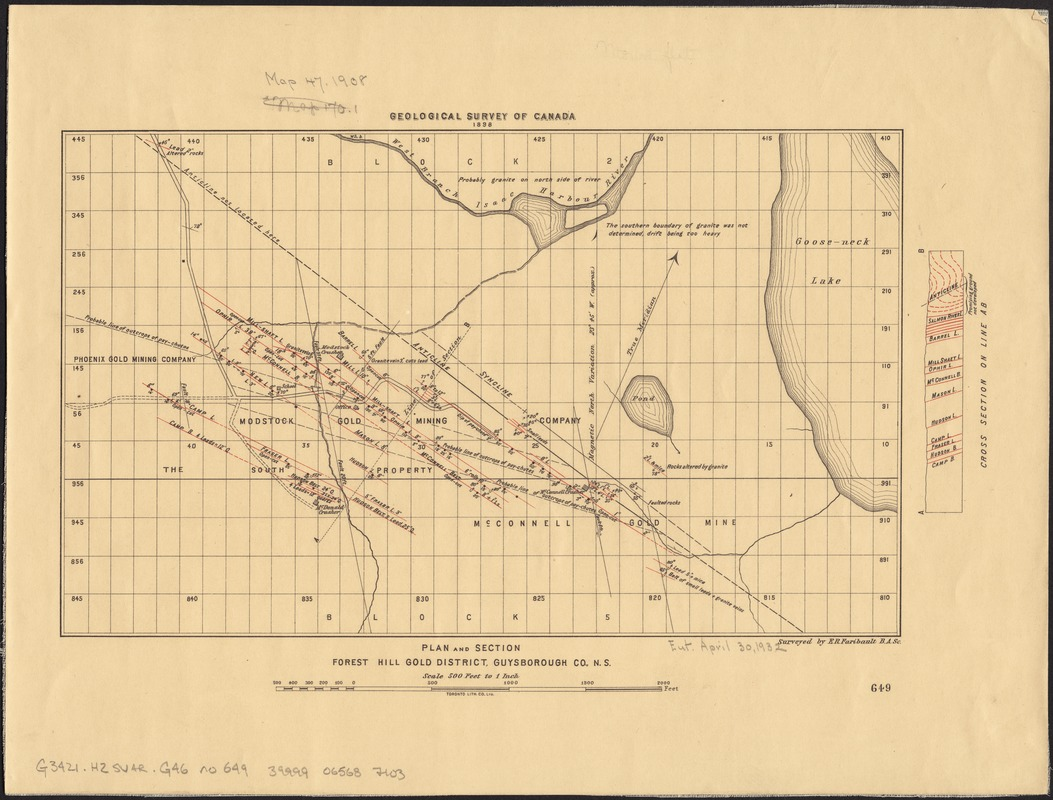 Plan and section Forest Hill gold district, Guysborough Co., N.S