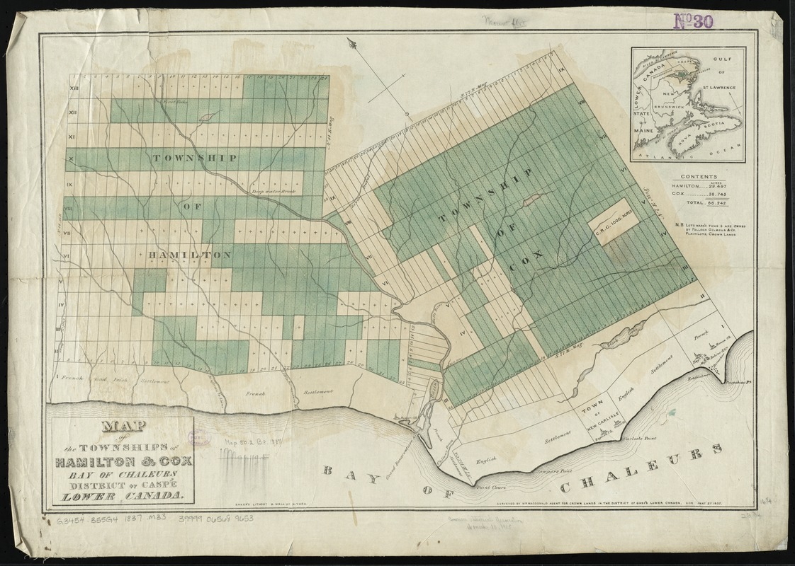 Map of the townships of Hamilton & Cox, Bay of Chaleurs, District of Caspé, Lower Canada
