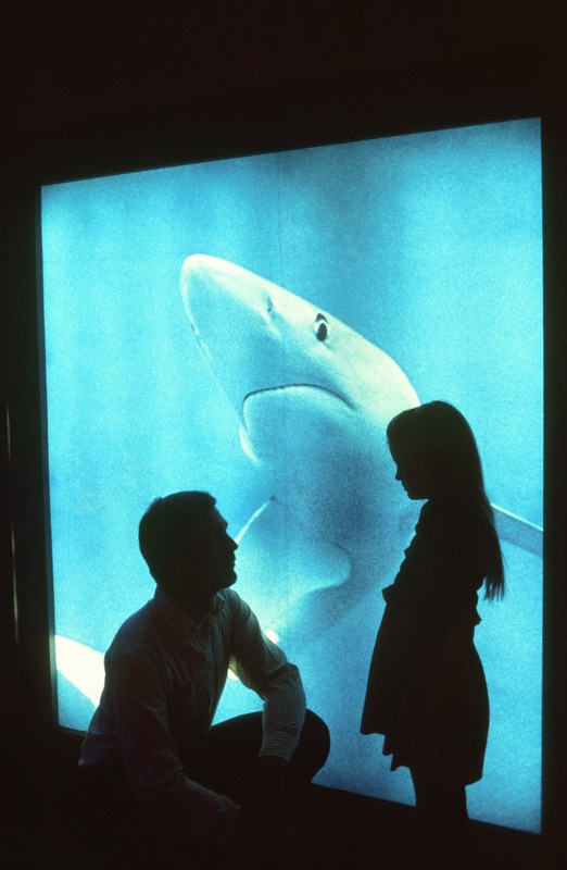 Father and daughter at shark photo, New England Aquarium, downtown Boston