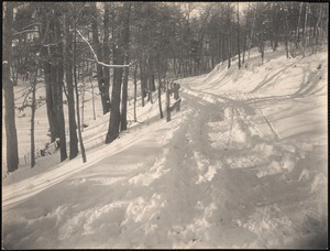 Wood sled road to wood lot. Mill pond road, Wayland.