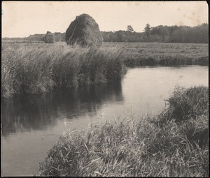 Haycocks (West Brook)