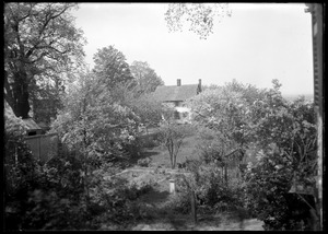 Garden from window, M E Goldthwaite