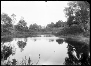 Noble pond