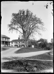 Great Elm and Washington Hill house, Hillsville