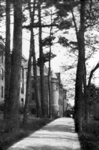 Wells and May Hall - The Walk Through the Grove, c. 1915