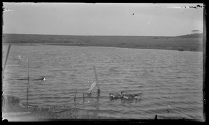 Water - small structure in distance