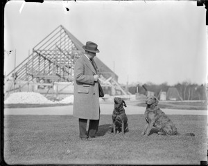 Sports stadium - man with 2 dogs