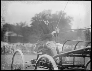 Woman driving a carriage