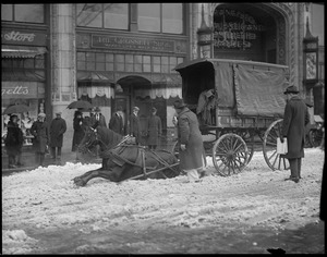 Horse pulling wagon slips in snow
