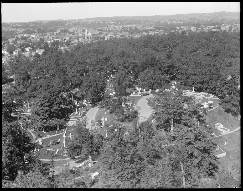 Bird's eye view of Mt. Auburn cemetery from tower