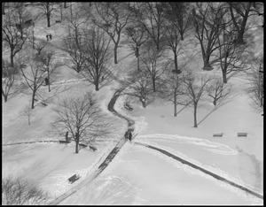 Public Garden from Ritz-Carlton, winter