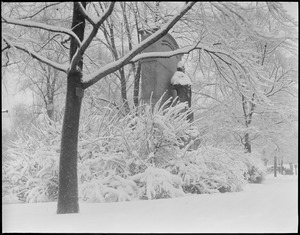 Public Garden Wendell Phillips statue covered with snow