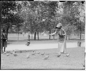Woman feeds pigeon on Common