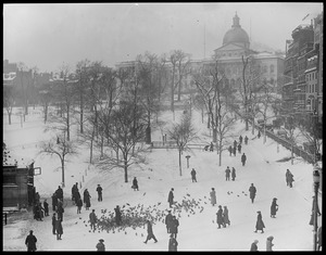 Boston Common and State House in winter