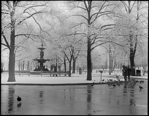 Boston Common after 1st snow fall