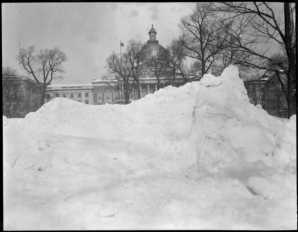 State House obscured by mound