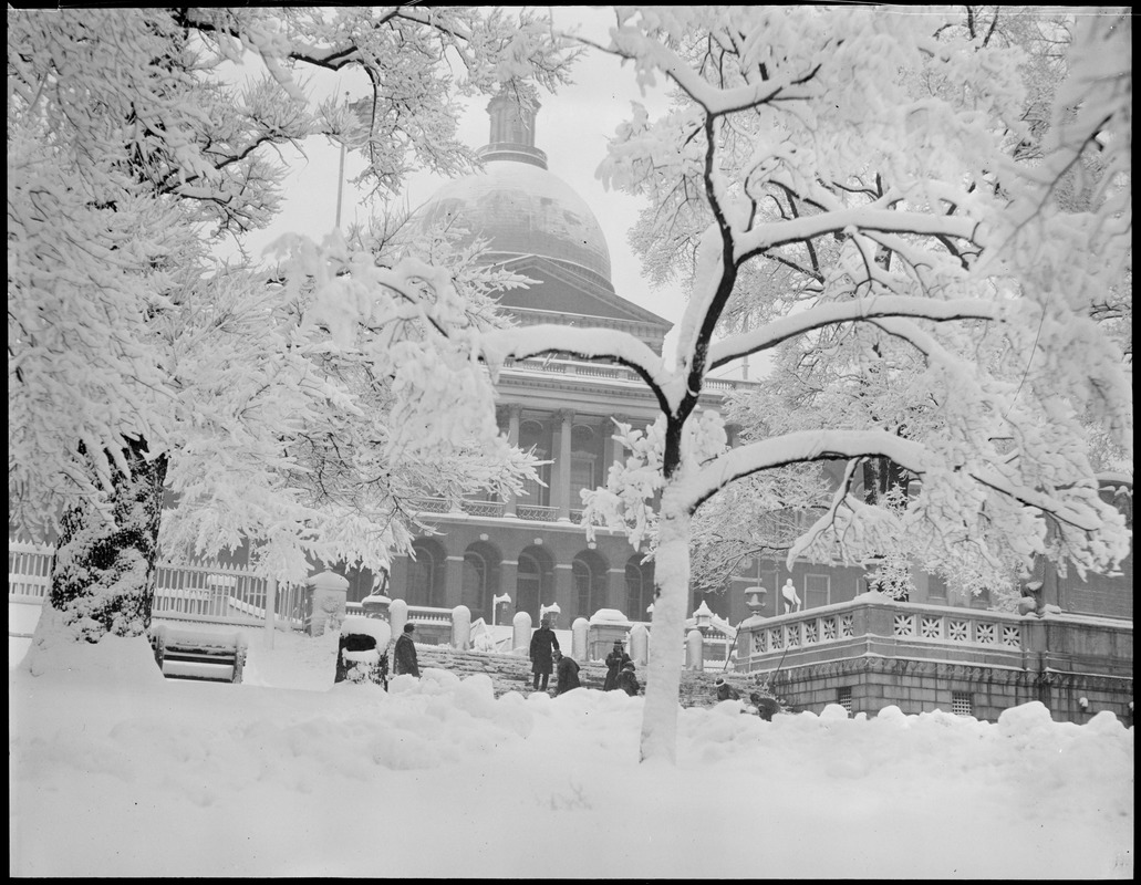 State House under snow
