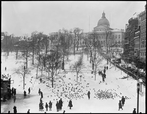 State House in wintertime from Tremont Street, feeding pigeon on Common - Bird's eye