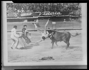 Fighting the bull in Spain & Mexico