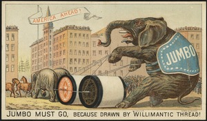 Jumbo must go, because drawn by Willimantic thread! America ahead!