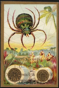 """Merrick Thread Co., Best Six Cord 8. The """"spider and the tiger"""""""