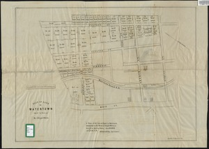 Plan of land in Watertown owned by heirs of Mr. Abijah White. : a plan of 31 lots of land in Watertown belonging to the heirs of Abijah White, to be sold at Auction Friday, June 25, 1852. at 3 1/2 o'clk. P.M.