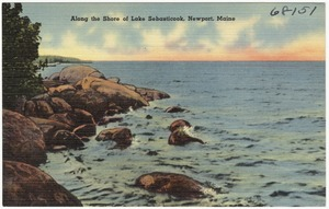 Along the shore of Lake Sebasticook, Newport, Maine