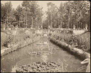 Bellefontaine: overgrown reflecting pool