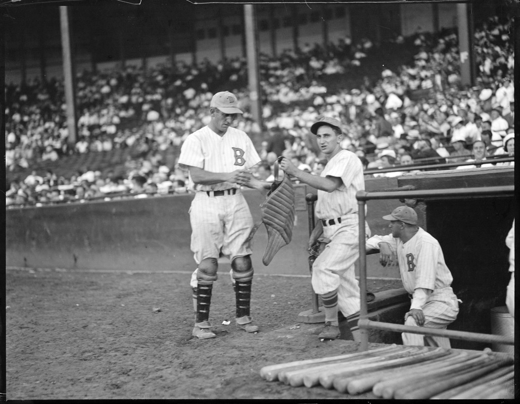 Bees catcher puts on his gear