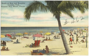 Beach at new and beautiful Crandon Park, Virginia key, Miami, Florida