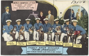 """Family race winner, """"North American"""", West Flagler Kennel Club, March 27, 1951, Miami"""