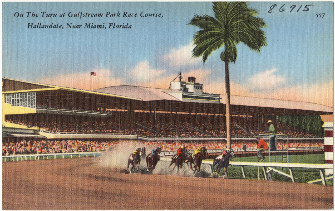On the turn at Gulfstream Park race course, Hallandale, near Miami, Florida