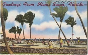 Greetings from Miami beach, Florida