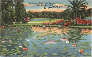 "Lily pool in Eola Park, Orlando, Florida, ""the city beautiful"""